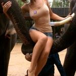 hot amateur brunette with visible nipples sitting on elephant